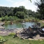 Плавательный пруд — экологический бассейн в саду