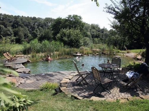 Плавательный пруд - экологический бассейн в саду